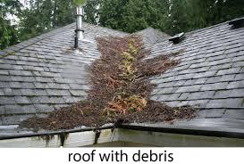 roof-with-debris